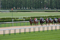 Horse racing, Deauville Royalty Free Stock Photography