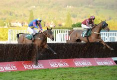 Horse Racing. Dolatulo 1st far side and jepeck 3rd near side seen here jumping the last at cheltenham races 5-5-17 Stock Images