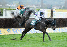 Horse Racing. Domesday book seen here on the run in at Cheltenham races 16-3-17 Stock Photo