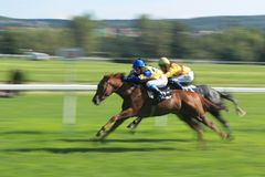 Horse racing - EBF prix in Prague Royalty Free Stock Image