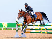 Horse racing. royalty free stock photos