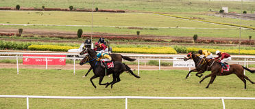 Horse Racing. Event in India, Pune stock photos