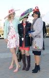 Horse Racing. Fashion at Cheltenham races 15-3-17 Stock Photo