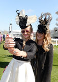 Horse Racing. Fashion at Cheltenham races 15-3-17 Royalty Free Stock Images