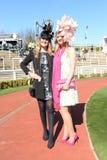 Horse Racing. Fashion at Cheltenham races 15-3-17 Royalty Free Stock Photos
