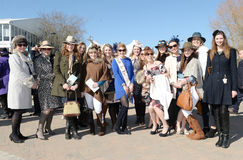 Horse Racing. Fashion at Cheltenham races 15-3-17 Nicky boon hen party Royalty Free Stock Image