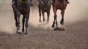The Feet of the Horses at the Racetrack. Horse Racing. The Feet of the Horses at the Racetrack Raising Dust and Dirt. Close Up. Slow motion stock video