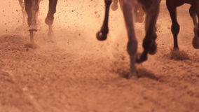 Horse Racing. Feet. Slow Motion. Horse racing. Legs of horses close-up. A lot of dirt under his hooves. Slow motion