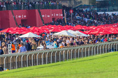 Horse Racing Track Betting Crowds Royalty Free Stock Photo