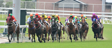 Horse racing game Stock Images