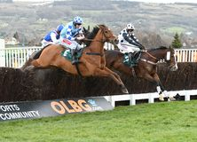 Horse Racing. Gino trail 1st far side black-weight and bun doran 2nd near side blue-weight seen here jumping the 2nd last at cheltenham races 16-12-17 Stock Image