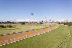 Horse Racing Greyville Stock Images
