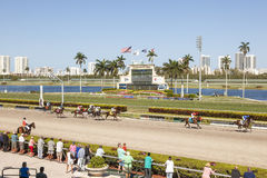 Horse Racing at the Gulfstream Park, Florida. HALLANDALE BEACH, USA - MAR 11, 2017: Horse racing at the Gulfstream Park race track in Hallandale Beach, Florida Stock Photo