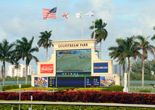 Horse Racing at Gulfstream park near Miami Royalty Free Stock Photo