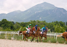 Horse racing at the hippodrome in Pyatigorsk. Stock Photography