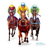 Horse racing. Hippodrome. Racetrack. Trio jockeys on horses. Isolated on white background. The view from the front royalty free stock images