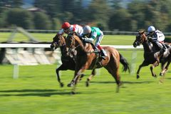 Horse racing - Hippospol prix race in Prague Stock Photos