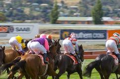 Horse Racing Hobart Tasmania stock image