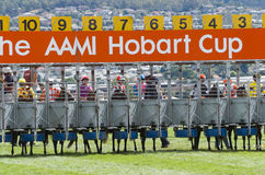 Horse Racing Hobart Tasmania Royalty Free Stock Photography