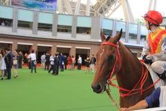 a Horse Racing at Hong Kong Jockey Club. stock image