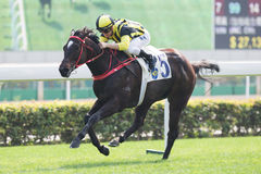 Horse Racing in Hong Kong - Sha Tin Racecourse Stock Photography