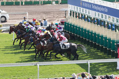 Horse Racing in Hong Kong - Sha Tin Racecourse Royalty Free Stock Images