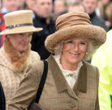 HRH The Duchess of Cornwall wife of the The Prince Royalty Free Stock Image