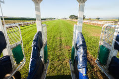 Horse Racing Inside Start Gate Track. Horse racing training start gate inside jockey horse view track grass in afternoon color Stock Image