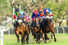 Horse Racing Jockey Action Stock Image