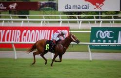 Horse Racing- Jockey Oscar Chavez Royalty Free Stock Images