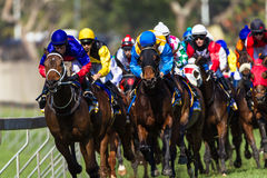 Horse Racing Jockeys Final Turn Stock Photo