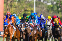 Horse Racing Jockeys Close-Up Colors Stock Photography