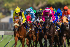 Horse Racing Jockeys Colors Stock Images