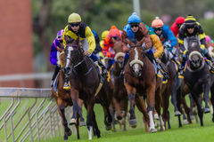 Horse Racing Jockeys Colors Royalty Free Stock Photos