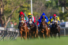 Horse Racing Jockeys Low Angle  Royalty Free Stock Images