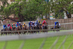 Horse Racing Jockeys Guard Railing Stock Image