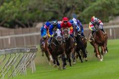 Horse Racing Jockeys Railing Stock Photo