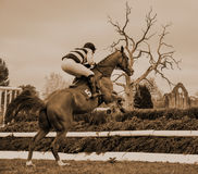 Horse Racing Jumping Fence - Peper Harow