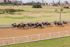 Horse Racing Landscape Royalty Free Stock Photography