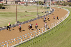 Horse Racing Landscape Stock Photography
