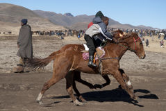 Horse racing in Lesotho Stock Photo