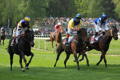 Horse racing in Lysa nad Labem Royalty Free Stock Photography