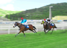 Horse racing in Mauritius Stock Photo