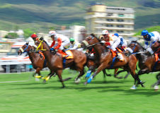 Horse racing in Mauritius. Typical horse race in Port Louis, every Saturday at the Champs de Mars, landmark race track in Mauritius with international jockeys Royalty Free Stock Photography