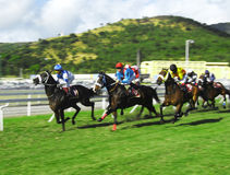 Horse racing in Mauritius. Typical horse race in Port Louis, every Saturday at the Champs de Mars, landmark race track in Mauritius with international jockeys Royalty Free Stock Images