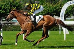 Horse racing in Milan, Italy Stock Image