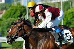 Horse racing in Milan, Italy Stock Photo