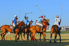 Horse Racing in Mumbai Stock Image
