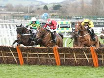 Horse Racing. My tent or yours 1st far side the new one 2nd red-weight star and melon 3rd yellow-black seen here jumping the last at cheltenham races 16-12-17 Royalty Free Stock Photos