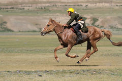 Horse racing during Naadam Royalty Free Stock Image